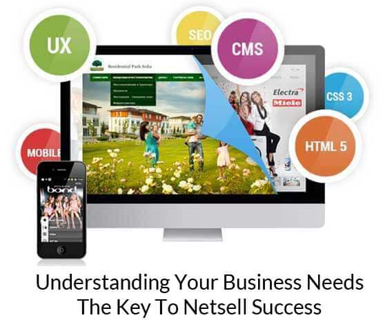 understanding your business needs the key to netsell success